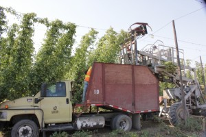 hop_harvest_top-cutter